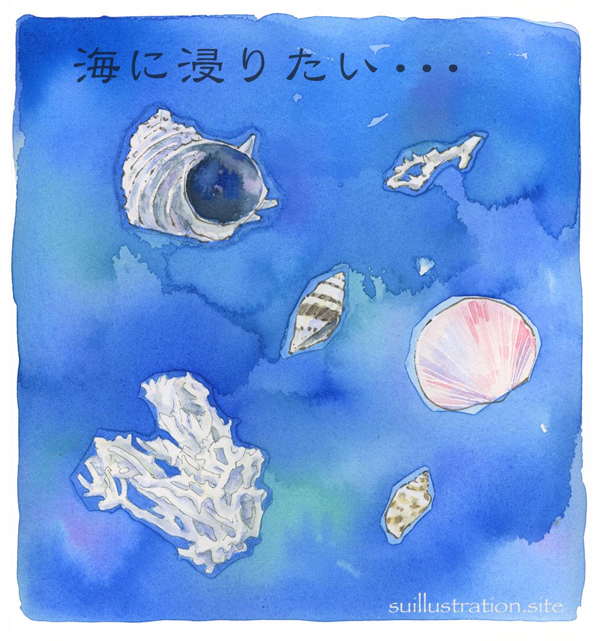海の落し物