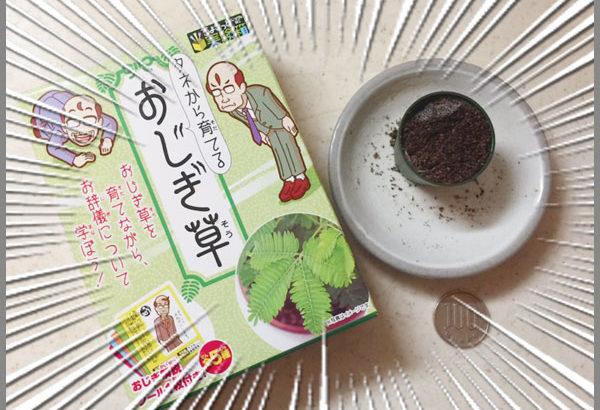 小学生男子・中学生女子へのプレゼントと、オリジナル雑貨