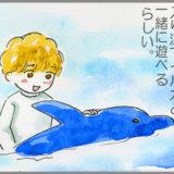 下田海中水族館は、ほんとにイルカとの距離が近い!